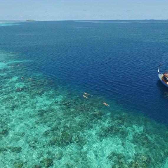 Sortie bateau snorkeling